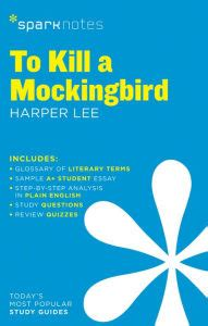 To Kill a Mockingbird Introduction & Overview